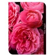 Роза Pink Piruet (Пинк Пирует)