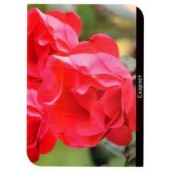 Роза Scarlet (Скарлет)
