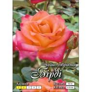 Роза Бирди
