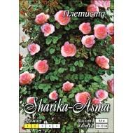 Роза Шарика-Асма