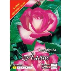 Роза Алянс
